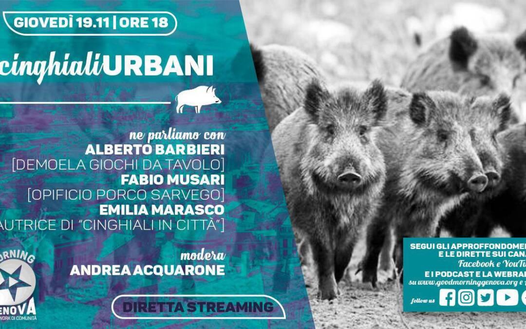 Cinghiali Urbani, in streaming Demoela su Good Morning Genova